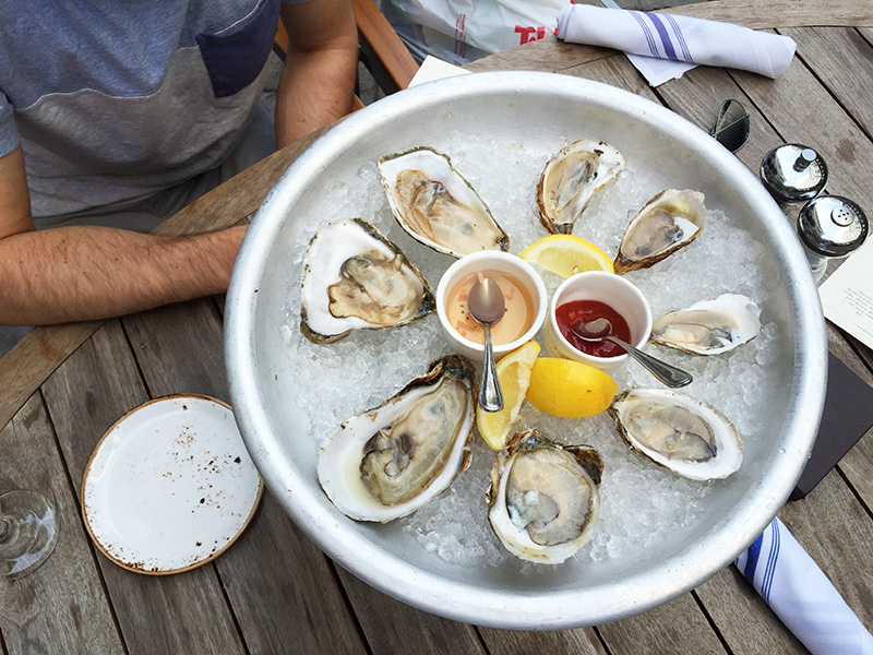 oysters in boston